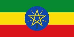 画像1: カフェインレス ハワ・イェンバー(エチオピア産)
