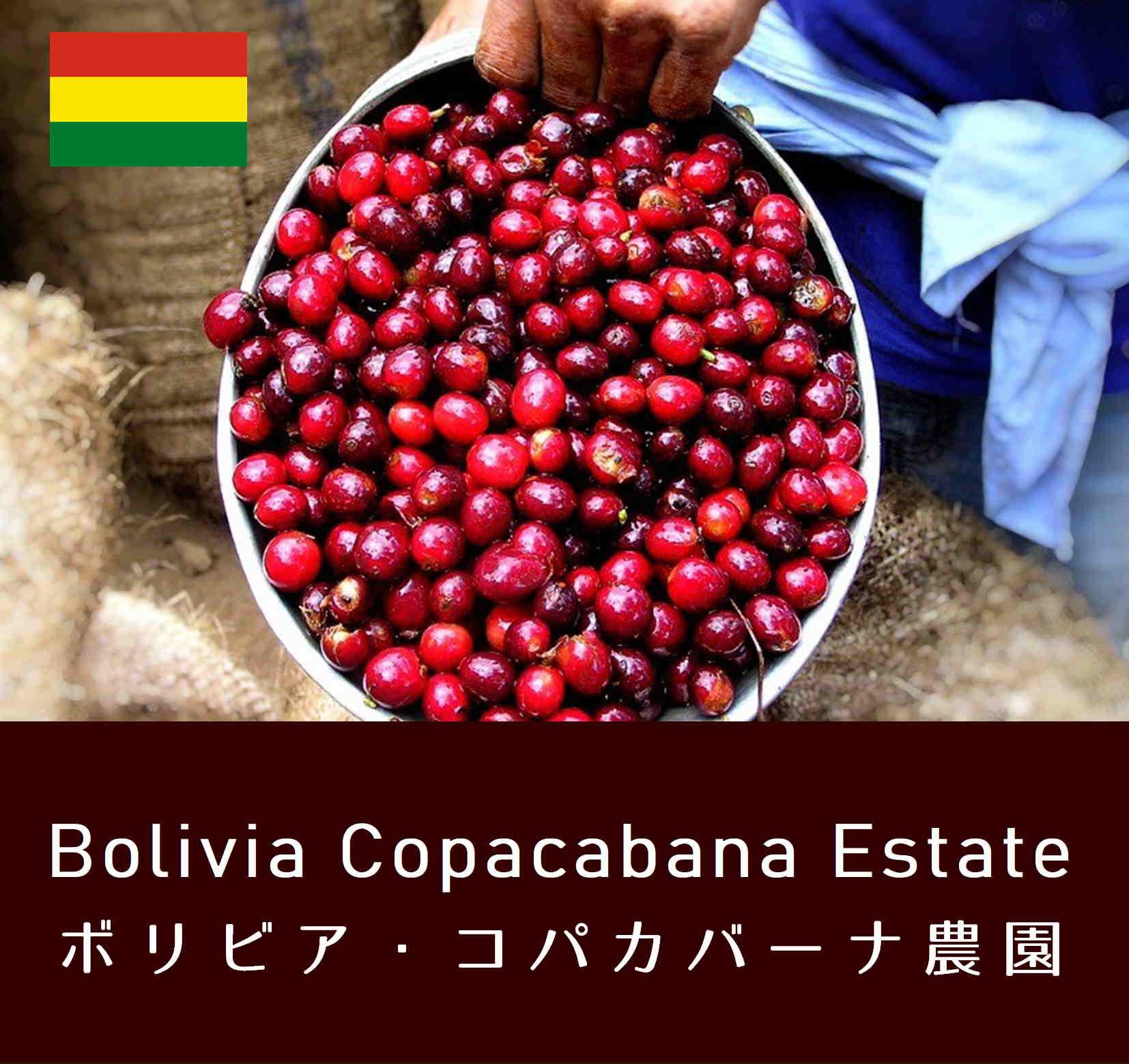 ボリビア・コパカバーナ農園