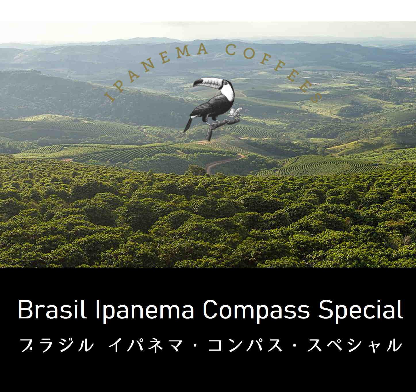 イパネマ・コンパス・スペシャル(ブラジル産)