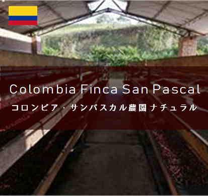 ColombiaSanPascal