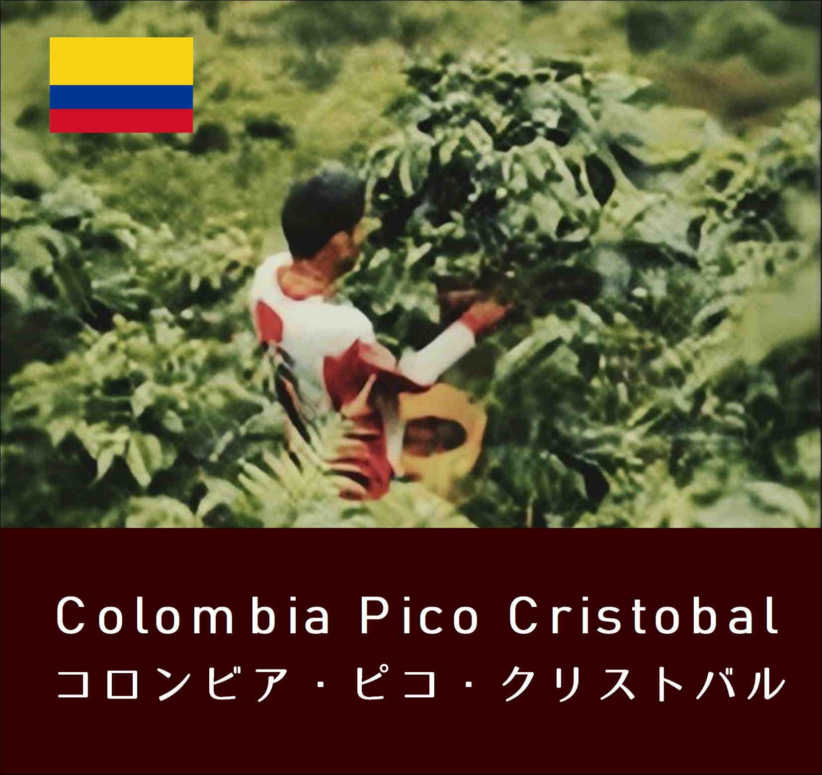 コロンビアピコ