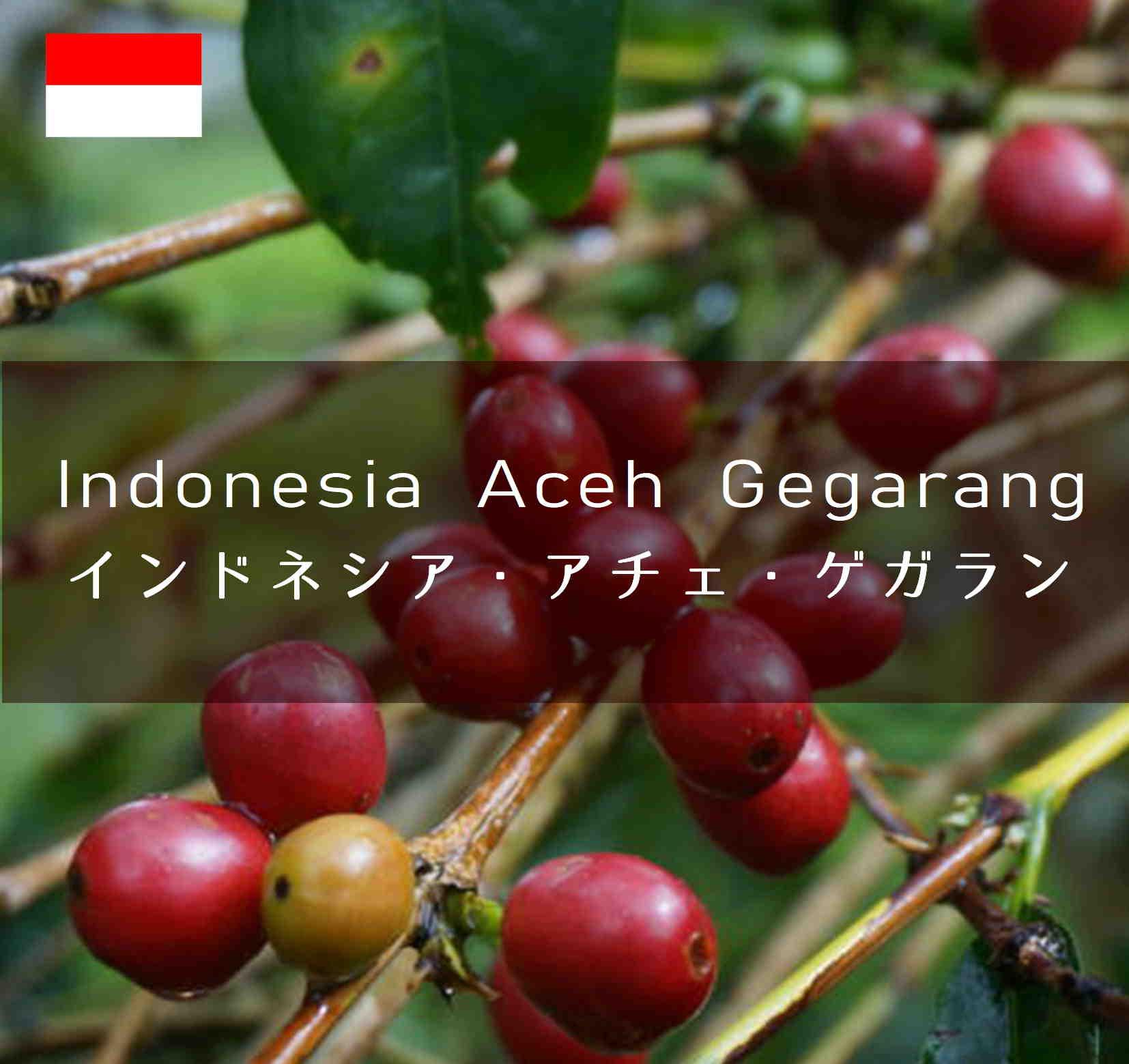 AcehGegarang
