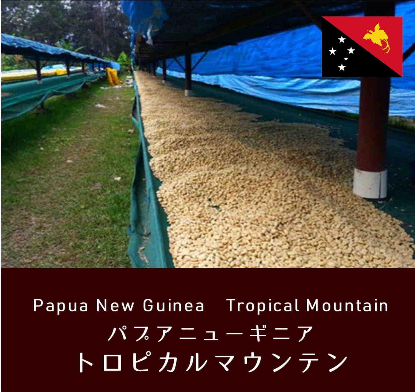 パプアニューギニア・トロピカルマウンテン