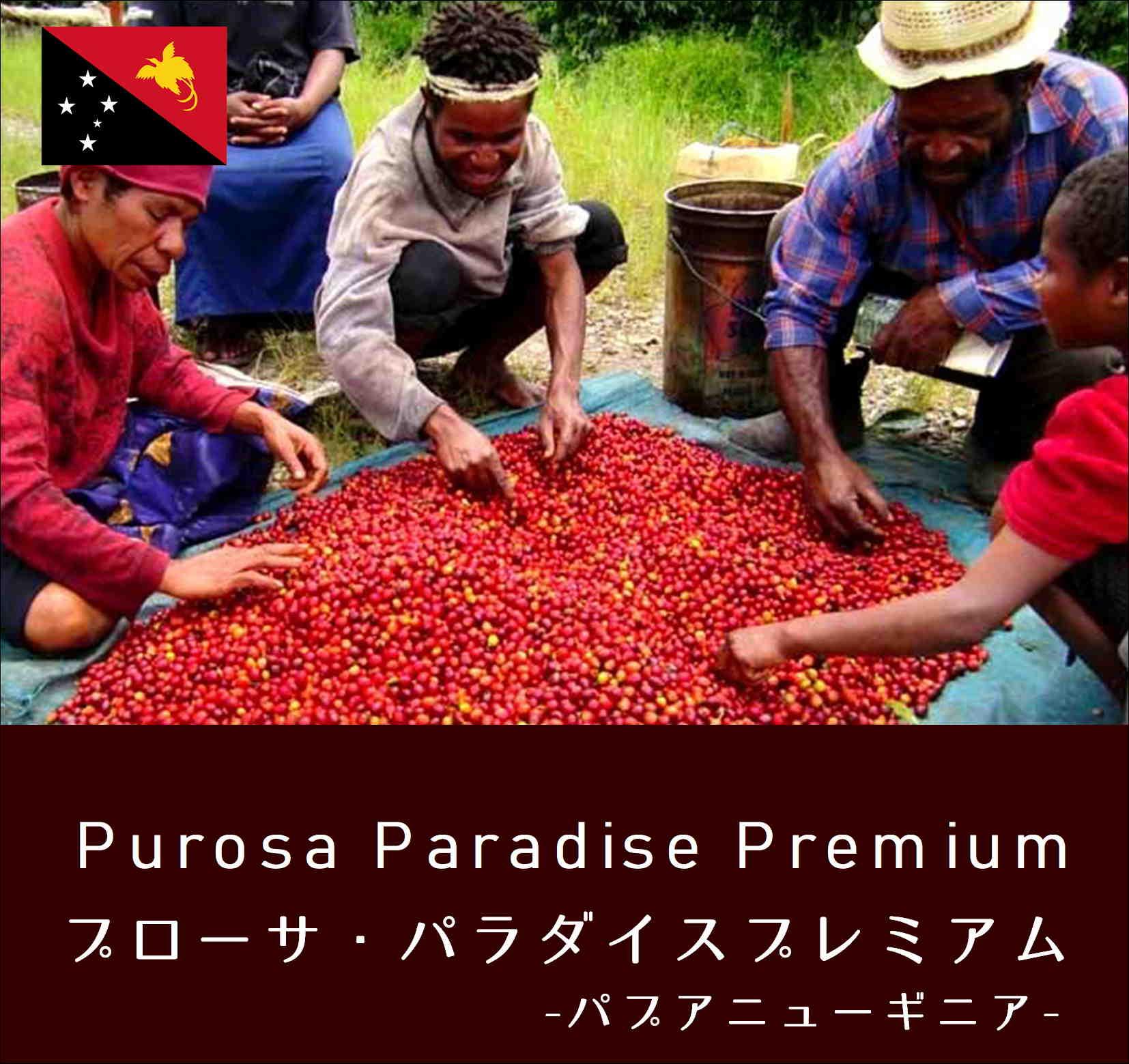 パプアニューギニア・プローサ